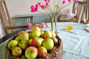 'Discovery' apples and sweet peas.