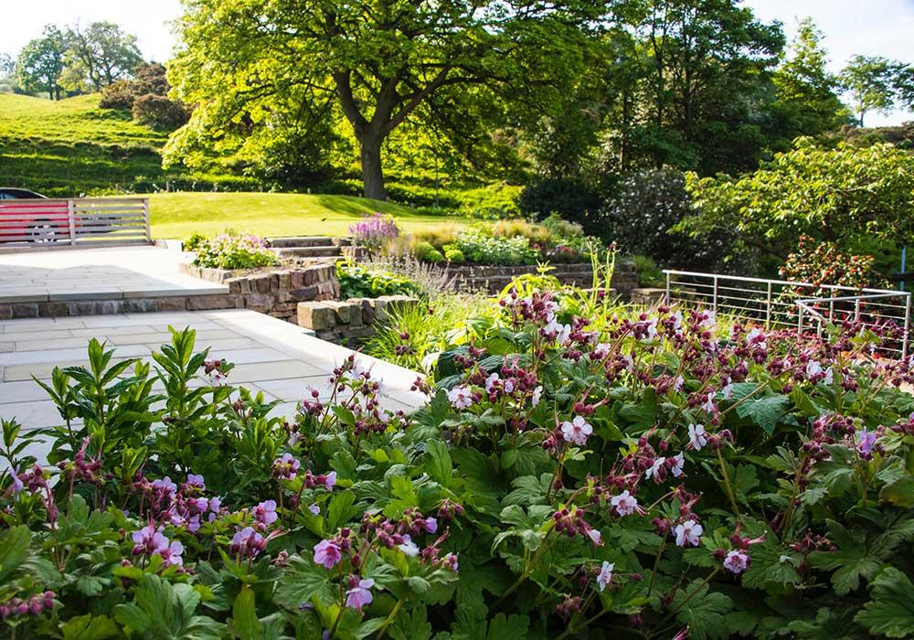Garden for a Contemporary House