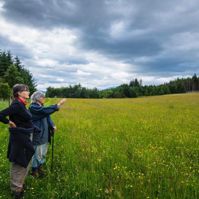 Self and esteemed sister-in-law admiring their orchid rich meadow a couple of weeks ago. Huge thank you to @jilljphoto - more of her brilliant work to come.  #scottishwildflowers  #wildflowermeadow #highlandperthshire #greatphotographer