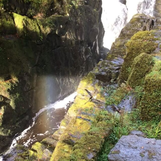 Morning walk up to the Hermitage. The sun came out. #highlandperthshire  #thehermitagedunkeld  #autumn #rainbow #waterfall
