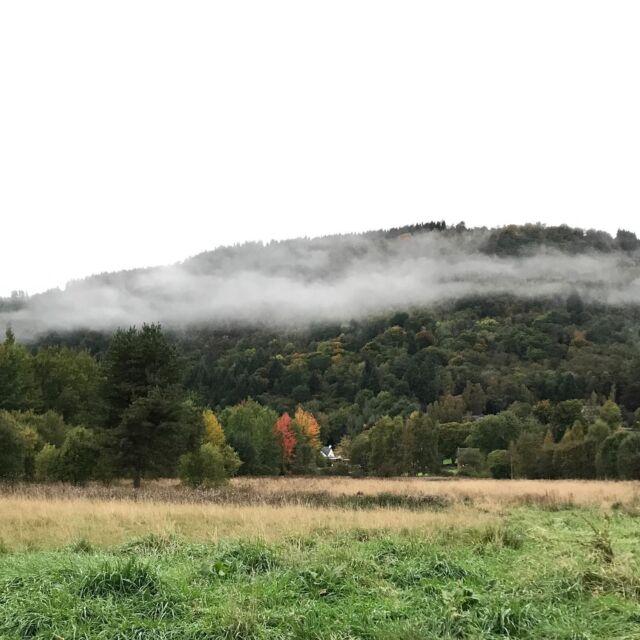 Weem rock wearing a cloud scarf. #highland Perthshire  #autumncolours  #Weem  #eveningwalk
